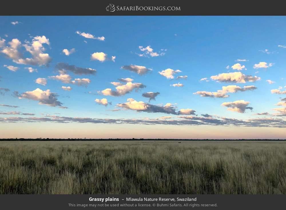 Grassy plains in Mlawula Nature Reserve, Swaziland