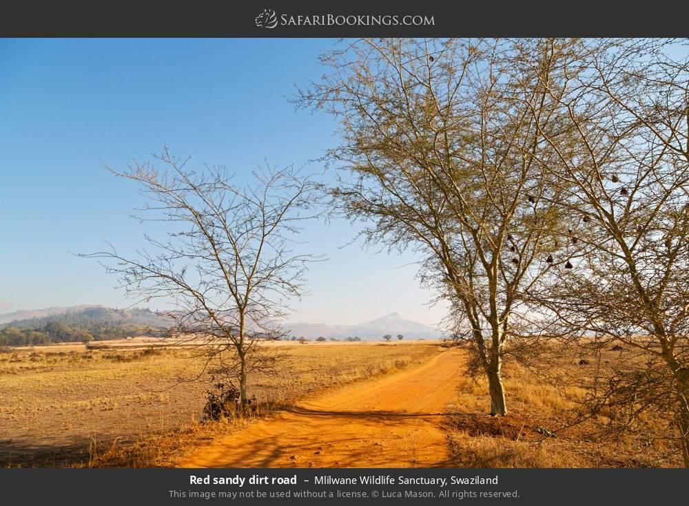 Red sandy dirt road in Mlilwane Wildlife Sanctuary, Swaziland
