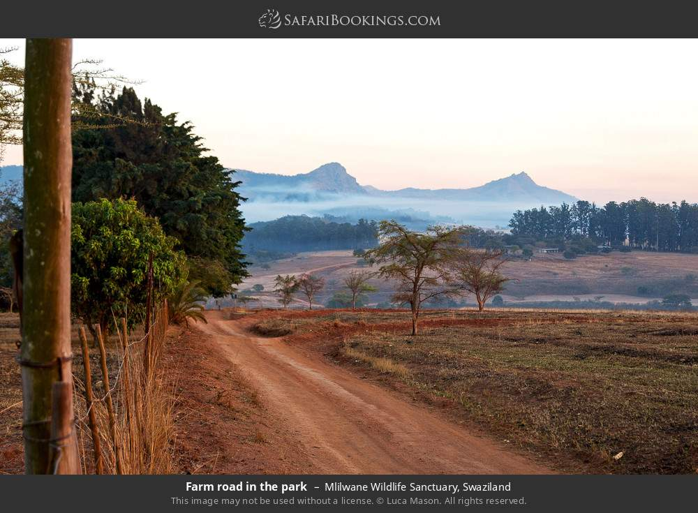 Farm road in the park in Mlilwane Wildlife Sanctuary, Swaziland