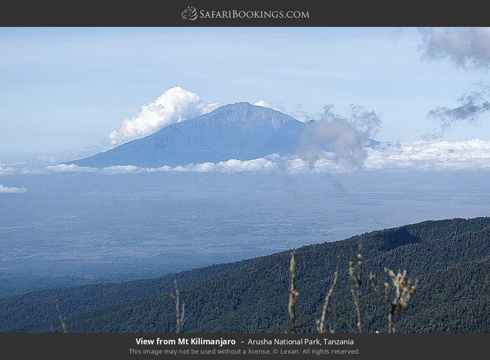 View from Mount Kilimanjaro in Arusha National Park, Tanzania