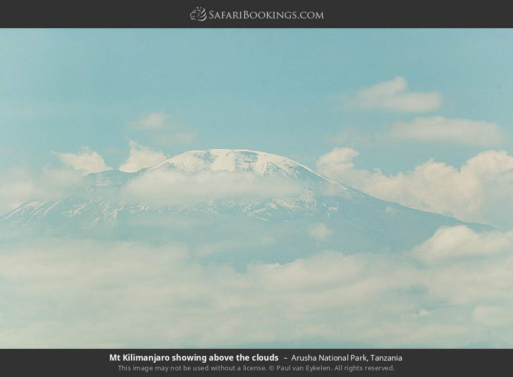 Mount Kilimanjaro showing above the clouds in Arusha National Park, Tanzania