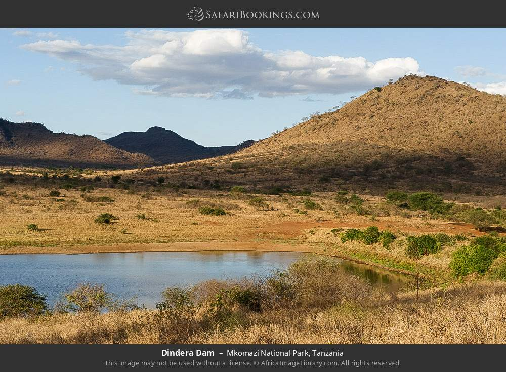 Dindera Dam in Mkomazi National Park, Tanzania