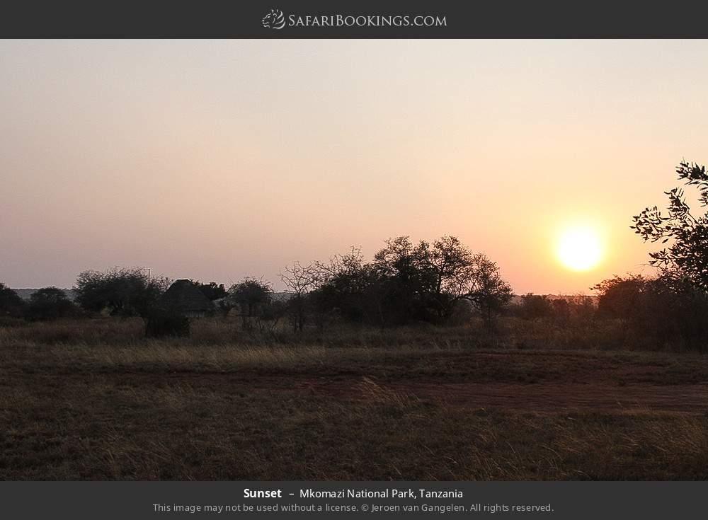 Sunset in Mkomazi National Park, Tanzania