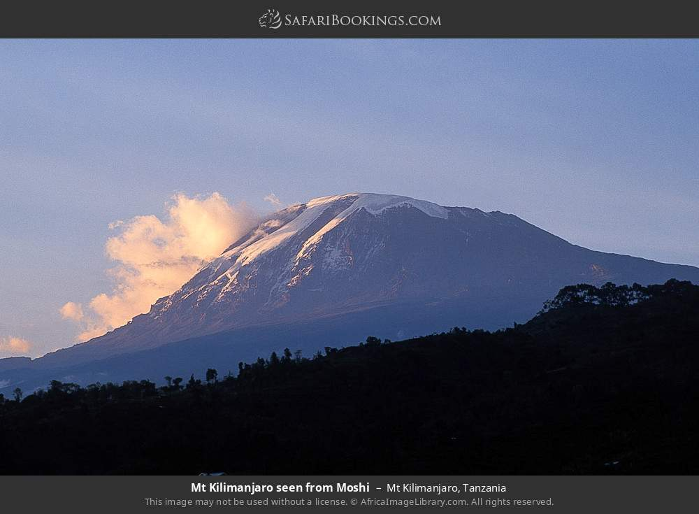 Mount Kilimanjaro seen from Moshi in Mount Kilimanjaro, Tanzania