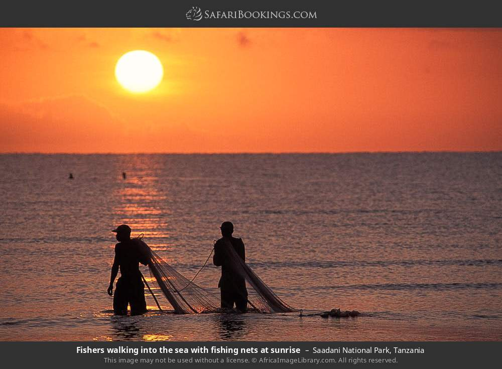 Fishermen walking into the sea with fishing nets at sunrise in Saadani National Park, Tanzania