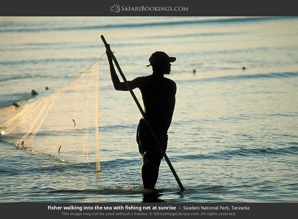Fisherman walking into the sea with fishing net at sunrise in Saadani National Park, Tanzania