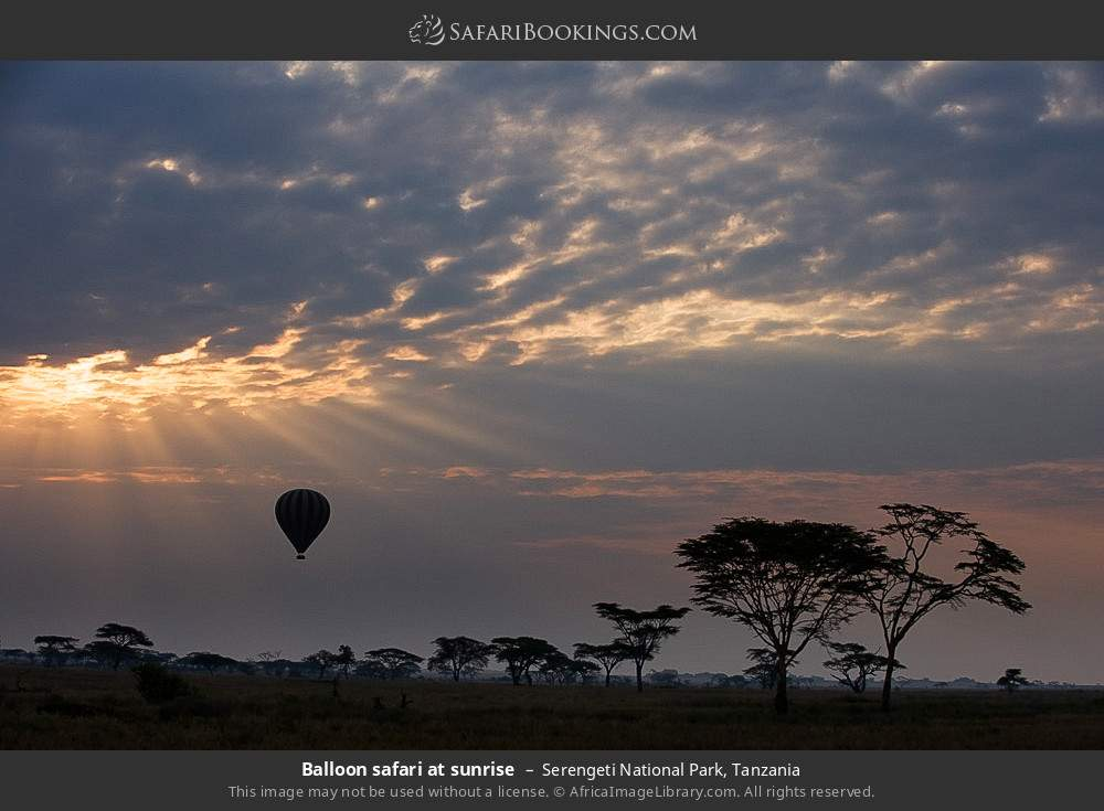 Balloon safari at sunrise in Serengeti National Park, Tanzania