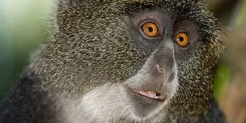 7-Day Culture and Wild Safari Tanzania