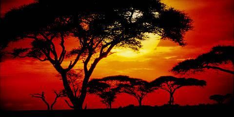 7-Day Safari + Sunset Walking on the Crater Rim & Maasai