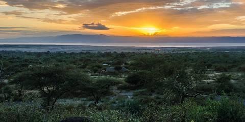 9-Day Ultimate Safari Experience
