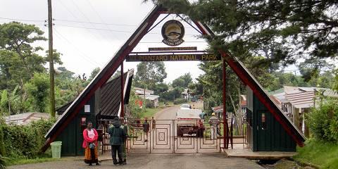 7-Day Safari: Kilimanjaro+Tarangire+Serengeti+Ngorongoro