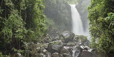 1-Day Trip to Kikuletwa Hotspring