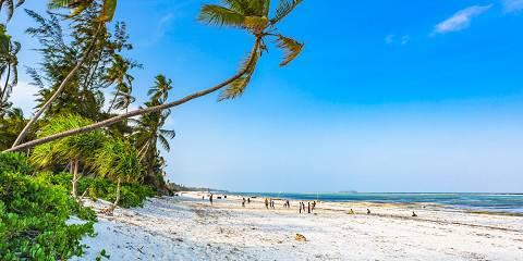 3-Day Zanzibar Beach Experience and Saadani NP
