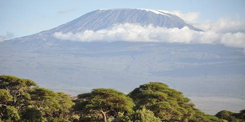 9-Day Climb Kilimanjaro Northern Circuit