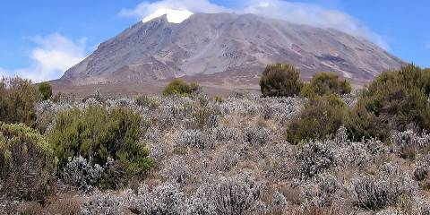 8-Day Climbing Mount Kilimanjaro via Marangu Route
