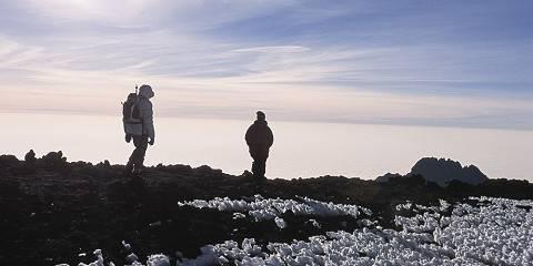 1-Day Kilimanjaro Mountain Trekking