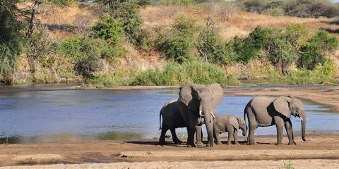12-Day Tanzania 2-4-6 Adventure Holiday