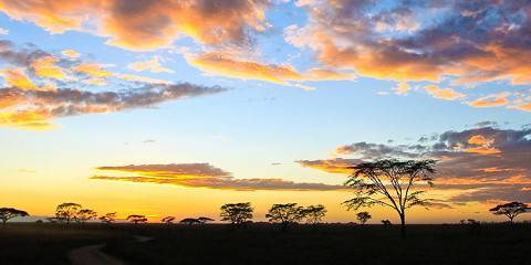 10-Day Safari in the Northern Park of Tanzania in Camping
