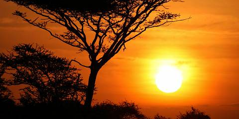 5-Day Discover Selous Game Reserve & Mikumi Park
