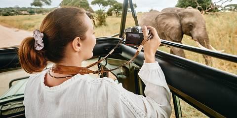 11-Day Ultimate Safari & Walking Experience