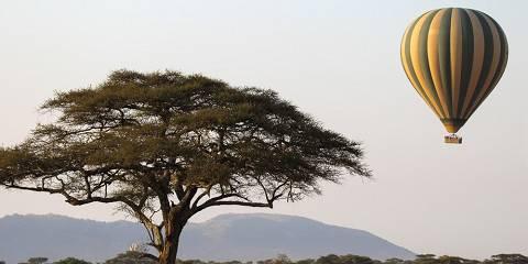 6-Day Camping Safari to Manyara, Serengeti & Ngorongoro
