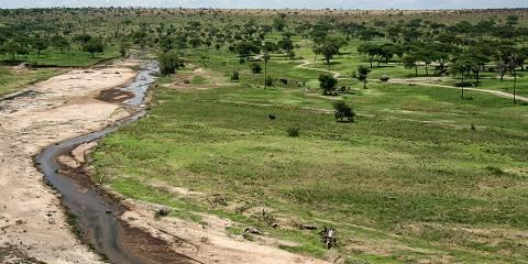 5-Day Tarangire, Lake Manyara, Serengeti, Ngorongoro