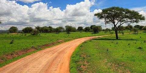 3-Day Budget Camping Tarangire NP, Ngorongoro & Manyara