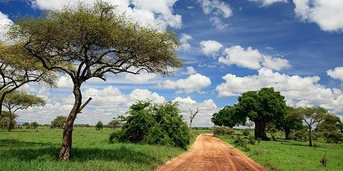 8-Day Tanzania Luxurious Safari Holiday