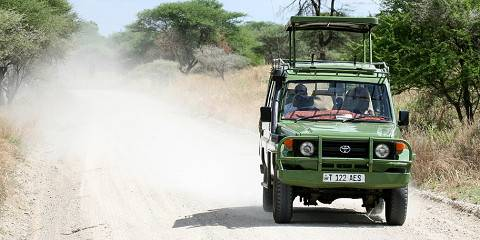 8-Day Tanzania Family Safari Gold Tour