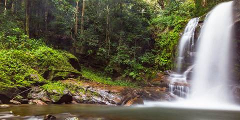 1-Day Materuni Water Falls Tour