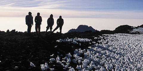 1-Day Hiking Mt Kilimanjaro