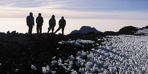 8-Day Lemosho Kilimanjaro Route