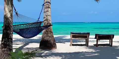 12-Day Wildlife Adventures & Zanzibar Beach Holiday