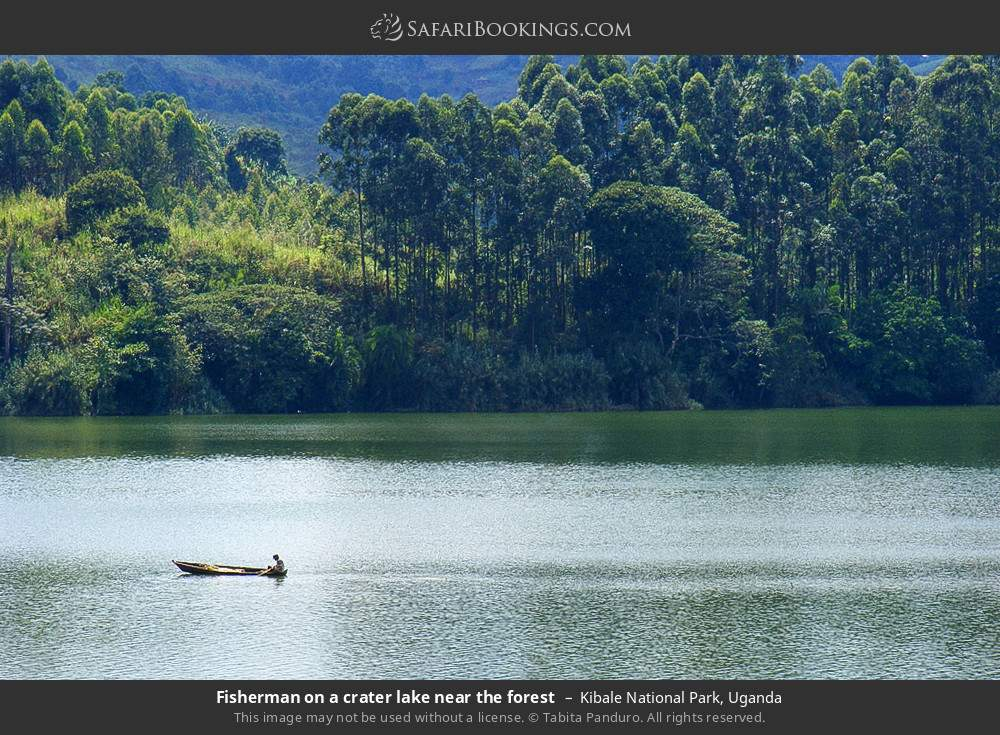 Fisherman on a crater lake near the forest in Kibale National Park, Uganda