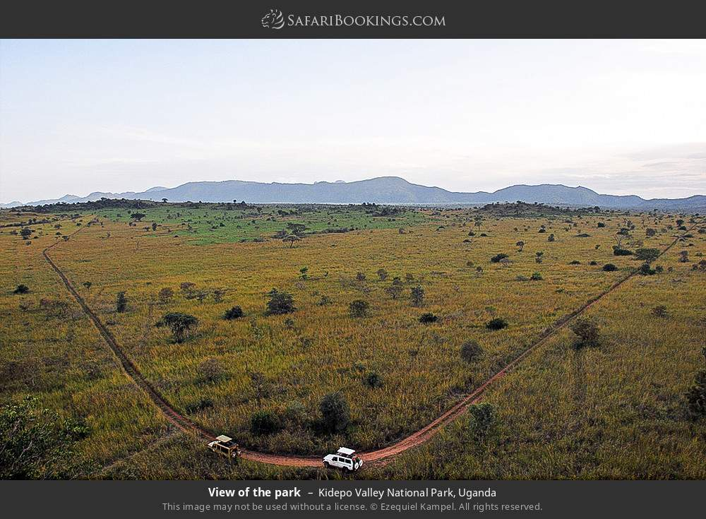 View of the park in Kidepo Valley National Park, Uganda