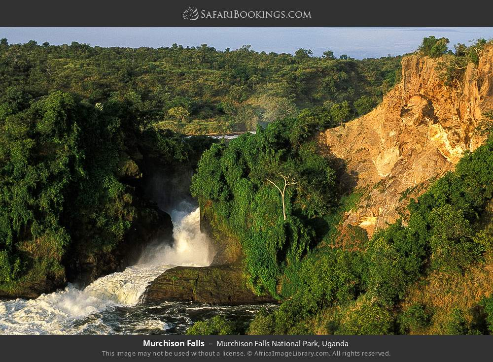 Murchison Falls in Murchison Falls National Park, Uganda