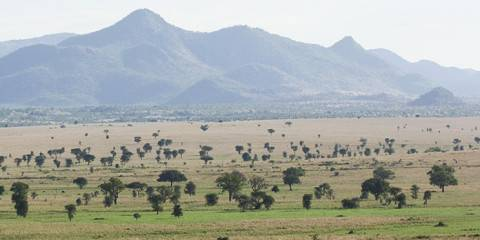14-Day Explore the Pearl of Africa Safari