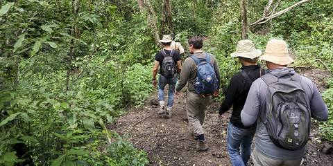 12-Day Trip Gorilla Trekking, Big 5 and Nature Sighting