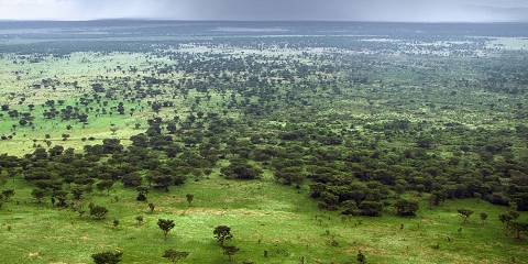 4-Day Kidepo Valley National Park Flight Safari (Luxury)