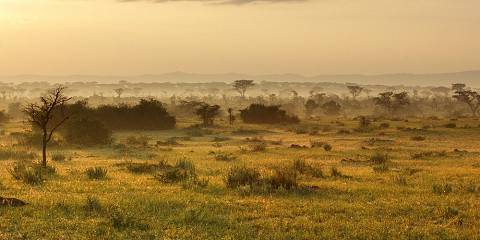 4-Day Explore Kidepo Valley National Park