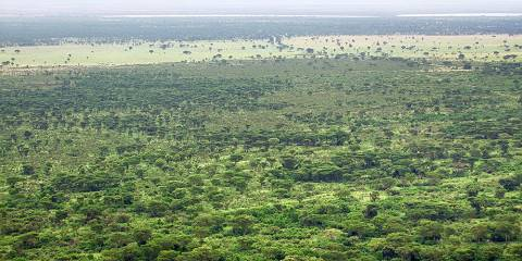 3-Day Queen Elizabeth Game Drives and Boat Cruise Safari