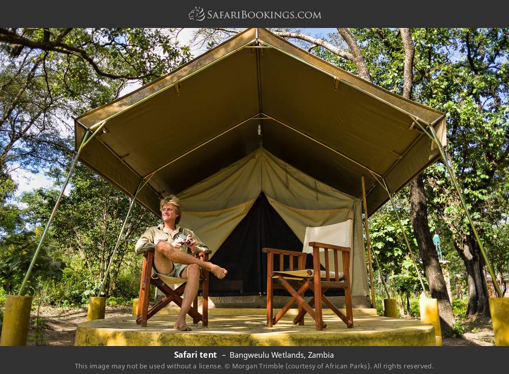 Safari tent in Bangweulu Wetlands, Zambia