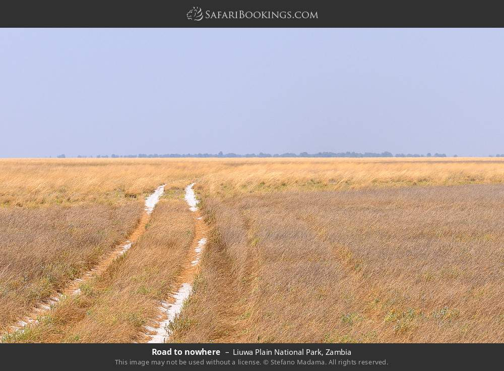 Road to nowhere in Liuwa Plain National Park, Zambia