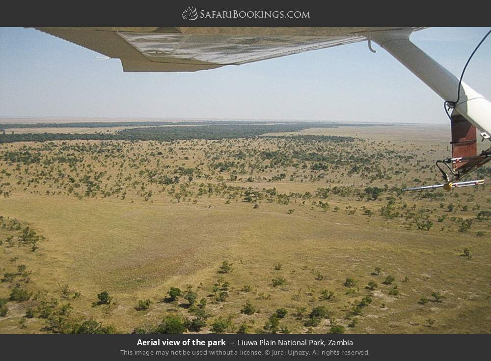 Aerial view of the park in Liuwa Plain National Park, Zambia