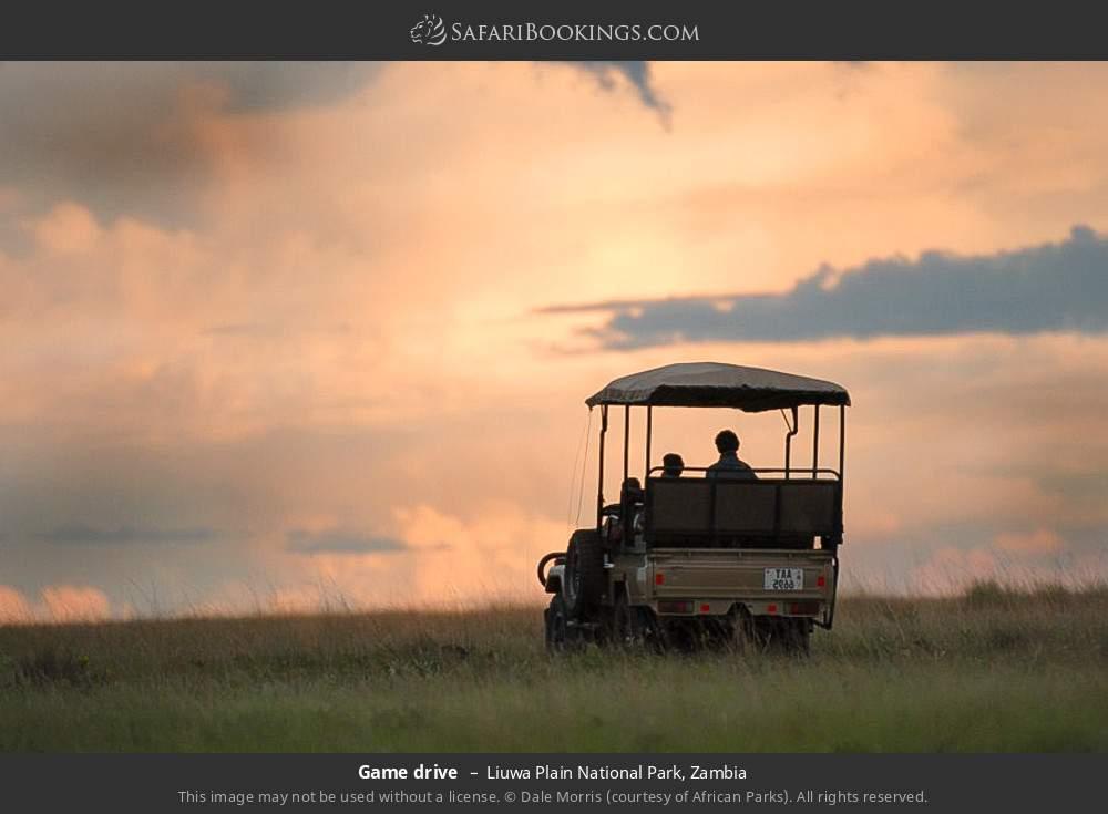 Game drive in Liuwa Plain National Park, Zambia