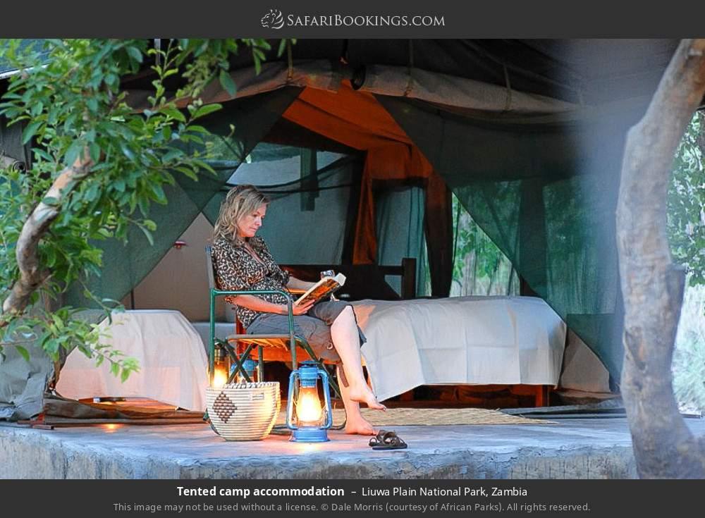 Tented camp accommodation in Liuwa Plain National Park, Zambia