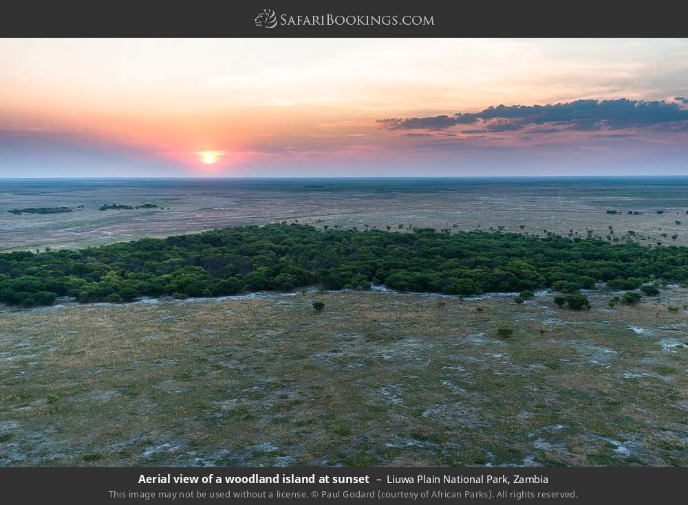 Aerial view of a woodland island at sunset in Liuwa Plain National Park, Zambia
