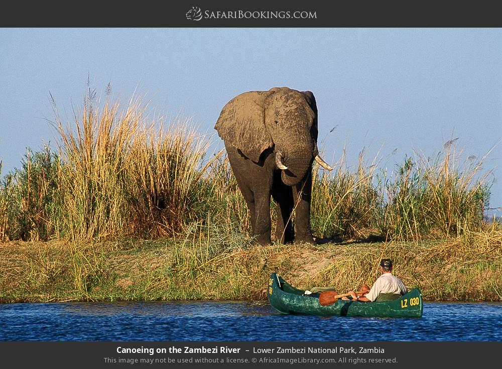 Canoeing on the Zambezi River in Lower Zambezi National Park, Zambia