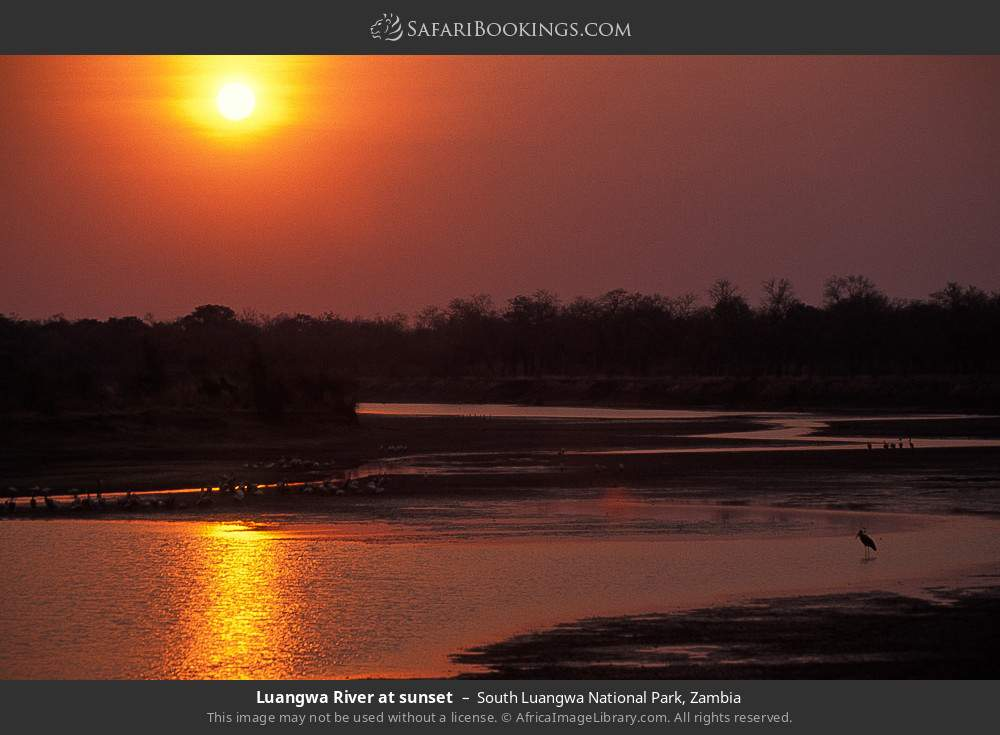 Luangwa river at sunset in South Luangwa National Park, Zambia