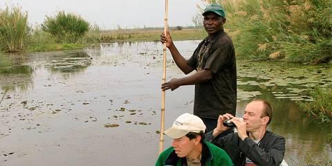 10-Day Bat Migration & Bangweulu Shoebills
